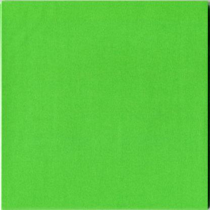 Einfarbiges Origami Papier Set Hellgrün